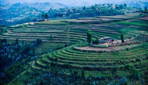 Terrace-farming on Rwanda's lush hills. (Jon Warren/WV)